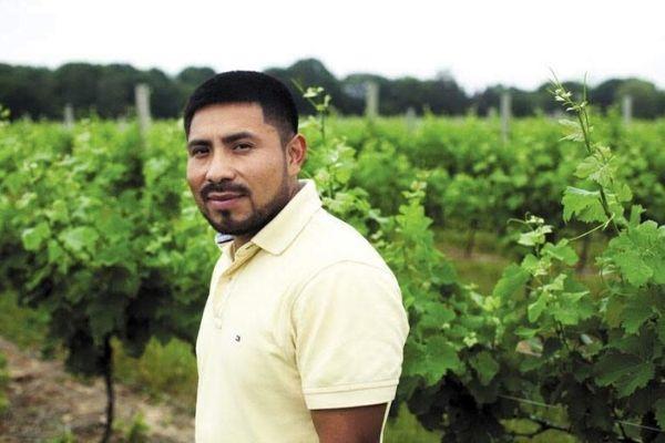 White Horse Winery Winemaker
